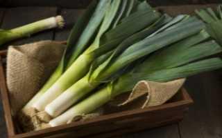 Лук порей: какую часть едят, что с ним делать и как использовать, чем представлена используемая в зимнее время съедобная часть