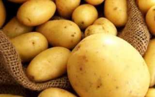 Картофель рваный: описание сорта, фото, отзывы