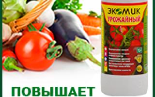 Томат Царевна лягушка: отзывы, инструкция по выращиванию, преимущества и недостатки этого сорта помидоров
