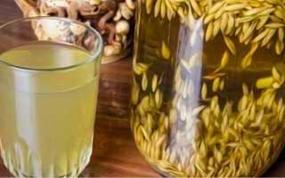 Ячмень-напиток: польза и вред отвара и порошка, лечебные свойства чайного злакового напитка, противопоказания и рецепты как правильно заваривать экстракт