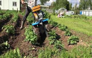Насадка на триммер для прополки картофеля: виды, принцип работы, как правильно полоть картошку таким приспособлением