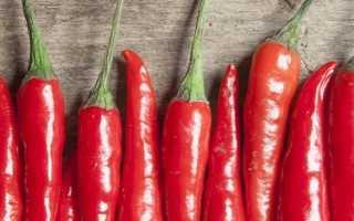 Перец Пепперони: что это такое, как выглядит и какой на вкус, выращивание и применение острого овоща, его преимущества и недостатки
