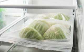 Как охладить нарезанную кусочками капусту: в пакете или без него, чтобы она не гнила, не портилась и не почернела