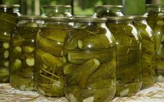 Консервированные хрустящие огурцы: самые вкусные рецепты пошагово, как консервировать огурчики на зиму в банках на 1 литр и 3 литра