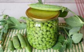 Инструкция как приготовить зеленый горошек в домашних условиях на зиму: лучшие рецепты заготовок с помощью консервирования, сушки и заморозки