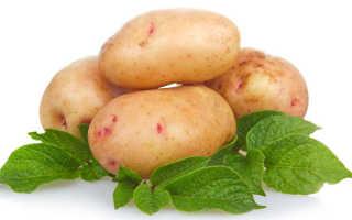 Можно ли есть картошку при поносе: может ли быть запор или диарея у взрослого от вареного картофеля