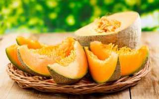 Дыня это ягода или фрукт, или овощ: что это такое, к чему относятся плоды растения, к какому семейству