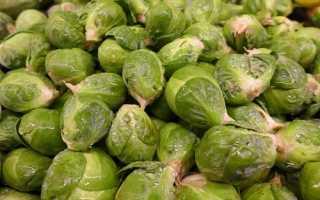 Как заморозить брюссельскую капусту на зиму в морозилке: правила замораживания в домашних условиях, сроки хранения, как разморозить продукт