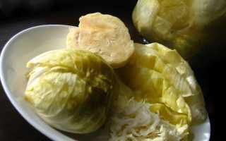 Как заквасить капусту кочанами: рецепты засолки в рассоле вилками и половинками, как посолить на зиму правильно, как хранить квашеную вилковую капусту