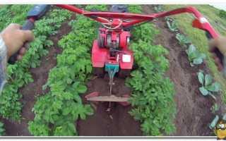 Техника и машины для обработки, возделывания и выращивания картофеля – названия, устройство, принцип работы