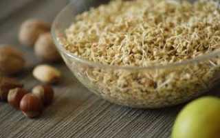 Как прорастить зеленую гречку в домашних условиях для еды: зачем её проращивать, как хранить пророщенную крупу