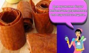 Малосольные огурцы: как хранить после засолки, сколько хранятся, что делать, чтобы они не стали солеными