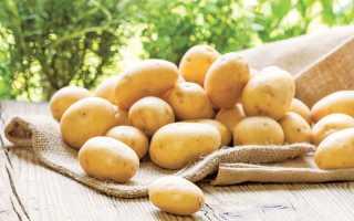 Китайский метод выращивания картофеля: способ посадки и ухода, который обеспечивает невероятную урожайность, растить картошку по-китайски, технология в мешках