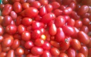 Томат Княгиня: описание сорта помидоров, отзывы дачников и секреты получения обильного урожая
