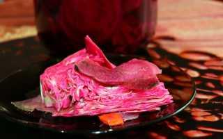 Рецепт пилюски из капусты без свеклы: пелюстка без буряка в банках, способы быстрого приготовления, как сделать вкусно