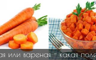 Как правильно есть морковь: как лучше усваивается в организме человека в сыром виде, витамин а, с чем лучше употреблять, надо кушать с жирами, маслом, сметаной