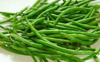 Стручковая фасоль: выращивание и уход на огороде в открытом грунте, фото как растет и виды, лучшие сорта