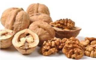 Скорлупа грецкого ореха: польза, лечебные свойства и вред