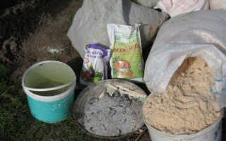 Когда лучше вносить навоз под картофель, осенью или весной: куриный помет как удобрение, как применять органические подкормки при посадке, когда и сколько