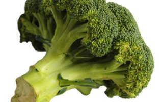 Чем полезна брокколи для женского организма – состав, полезные свойства, возможный вред и противопоказания