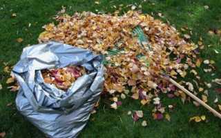 Опавшие листья на селе: как использовать материал – Статья – Журнал – FORUMHOUSE