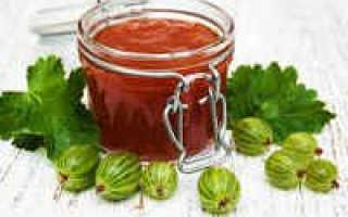 Соус из крыжовника на зиму – 10 рецептов к мясу