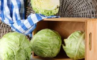 Как хранить капусту в домашних условиях в квартире на зиму, пригодна ли для хранения при комнатной температуре в свежем виде