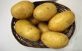 Картофель крепуш: урожайность, описание, вкусовые качества клубней