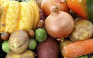 Сорта картофеля с высоким содержанием крахмала: с низким процентом в составе, производство самого крахмалистого вида