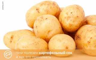 Картофельный сок: лечебные свойства при диабете 2 типа, при каких заболеваниях применяют, от чего помогает, чем полезен и какой вред и противопоказания, на ночь