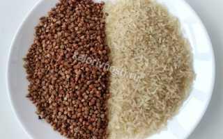 Рис или гречка для похудения: что лучше и полезнее, сравниваем калорийность (сколько калорий в обоих продуктах), рисовая и гречневая диета