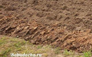 Подготовка грядки под морковь осенью: почва в открытом грунте, какую землю любит морковка, как подготовить весной