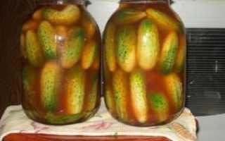 Огурцы с имбирем на зиму: рецепты маринованных и консервированных овощей, советы по приготовлению