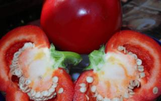 Перец Колобок: описание сладкого сорта, фото грядок, отзывы опытных фермеров