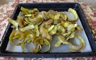 Картофельные очистки как удобрение: для каких растений и как использовать на огороде, применение для сада, что подкормить, можно ли выбрасывать