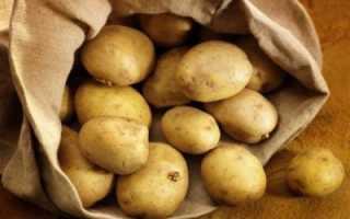 Какой сорт картофеля рассыпчатый и вкусный: разваристый при варке с желтой мякотью, описание сорта красного и белого, фото клубней и отзывы