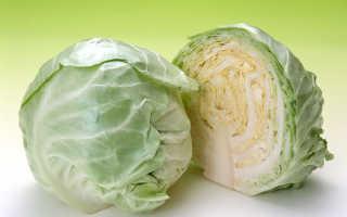 Можно ли квасить капусту в пластиковом ведре для пищевых продуктов и прочей пластмассовой посуде, рецепты квашеной капусты в пластиковой бочке
