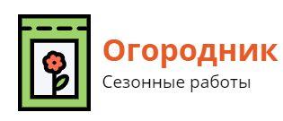 stizagro.ru